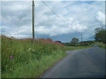 N6077 : Rural road west of Patrickstown by Eric Jones