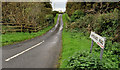 D4202 : The Quarterlands Road, Islandmagee (1) by Albert Bridge