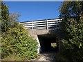 TQ3053 : Foot tunnel under M23 by Derek Harper