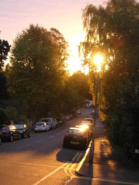 Dawn, Fox Hill, SE19