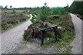 NH9207 : Path junction north of the Cairngorm Club footbridge, Rothiemurchus by Phil Champion