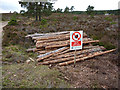 NH9107 : A small timber stack near Lochan Deo, Rothiemurchus by Phil Champion