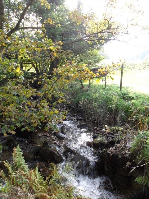 Bradley Brook near Slaithwaite