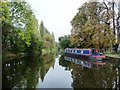 SK7090 : Living dangerously on the Chesterfield Canal by Christine Johnstone