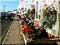 SY6879 : South along Brunswick Terrace, Weymouth by Brian Robert Marshall