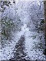 TM3490 : Railway walk near Broome by Glen Denny