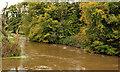 J2765 : Canal overspill, Lambeg/Hilden (2011) by Albert Bridge