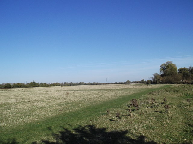 Meadow besides the Thames