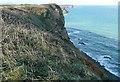 SW6243 : North Cliffs by Graham Horn