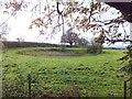 SJ5367 : A pond (a dew-pond?) near Summertrees by David Smith