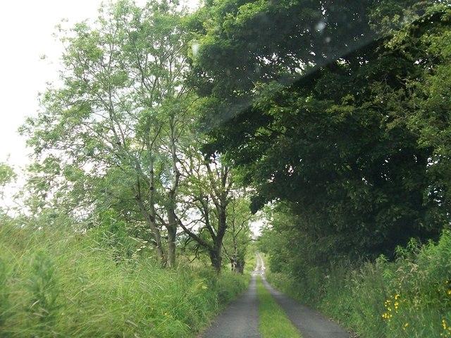 Bohreen leading towards Sliabh na Caillí