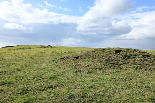 Tumuli on Wears Hill