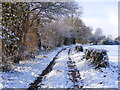 TM3390 : Footpath to Outney Common by Glen Denny