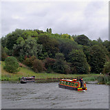 SJ6475 : The River Weaver near Anderton, Cheshire by Roger  Kidd