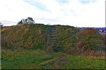 SP1566 : Beaudesert Castle, Ramparts, Henley in Arden by Paul Buckingham