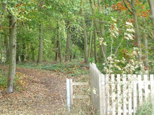 Well-used path into Barnby Fox Covert
