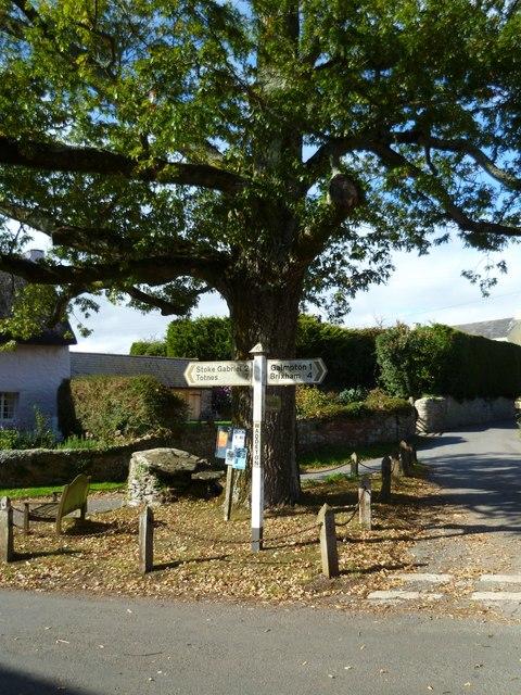 Orange Way in Devon and Torbay (22)