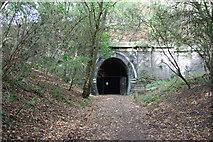 SP7579 : Kelmarsh Tunnel by Richard Croft