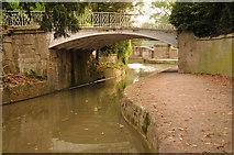 ST7565 : Iron canal bridges, Bathwick by Philip Halling