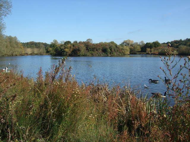 Island on Hainault Forest Country Park
