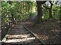 SD7312 : Footpath in Bradshaw by Philip Platt