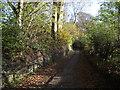 SD7312 : Rigby Lane, Bradshaw by Philip Platt