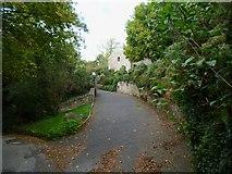 SX8658 : Orange Way in Devon and Torbay (29) by Shazz