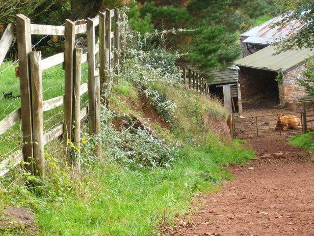 Orange Way in Devon and Torbay (37)