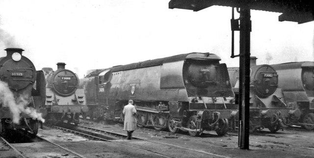 Line-up of locomotives at Stewarts Lane Locomotive Depot