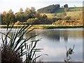 NU0416 : View over Branton Ponds by David Clark