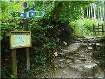 SX8462 : Orange Way in Devon and Torbay (66) by Shazz