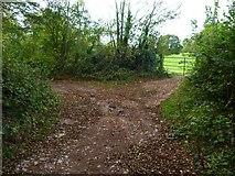 SX8463 : Orange Way in Devon and Torbay (69) by Shazz