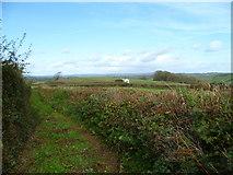 SX8564 : Orange Way in Devon and Torbay (73) by Shazz
