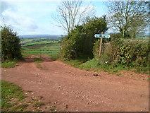 SX8565 : Orange Way in Devon and Torbay (77) by Shazz