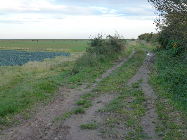Track on an old sea bank near Gedney Drove End
