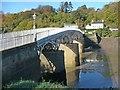 ST5394 : Chepstow Old Bridge by Robin Drayton