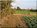 TQ8098 : Footpath marker by Roger Jones