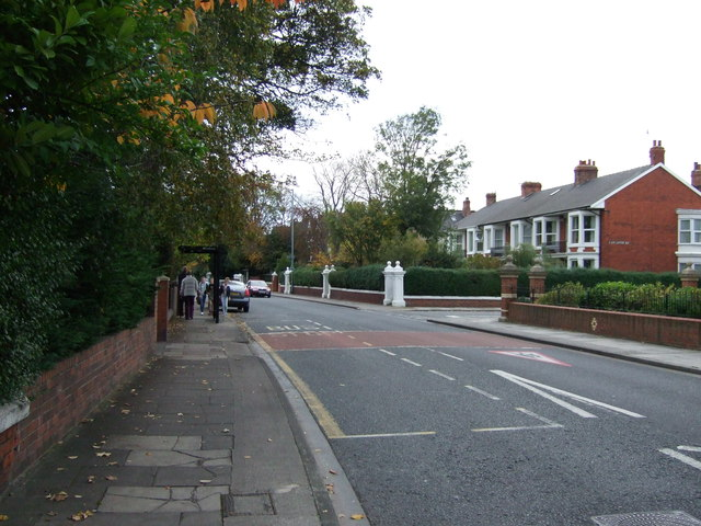 The Avenue, Middlesbrough