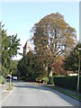 TQ3355 : Harestone Valley Road, Caterham by Malc McDonald