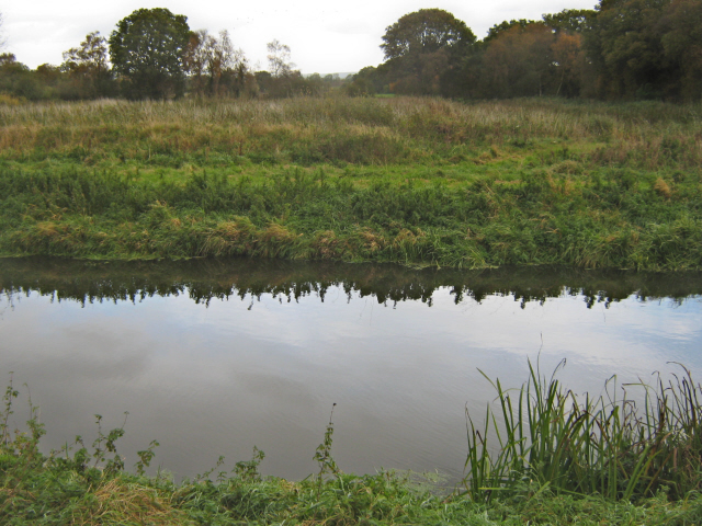 The Glastonbury Canal and Shapwick Heath