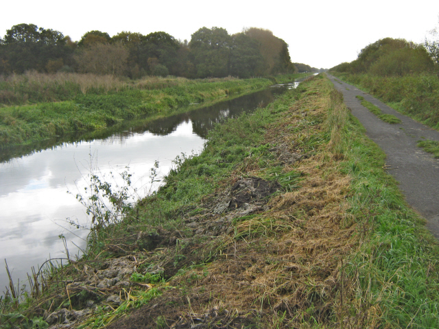 The Glastonbury Canal and cycle track, Shapwick Heath