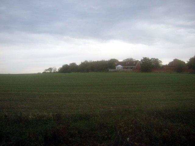 Farmland near Gypsy Lane