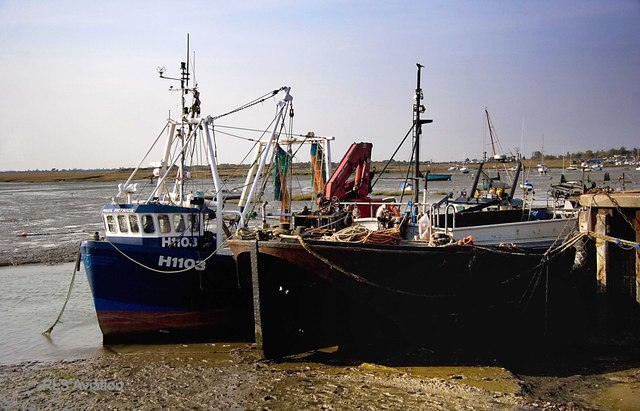 Leigh Boats
