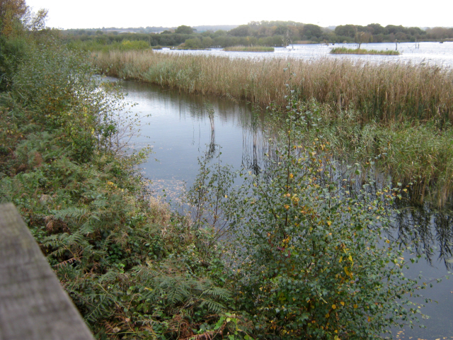 View from Noah's Hide