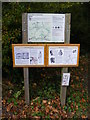 TM1776 : Hoxne Information Board by Adrian Cable