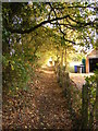 TM4281 : Footpath to the A145 London Road by Adrian Cable