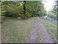 SU9935 : Footpath into Birchen Copse by Dave Spicer