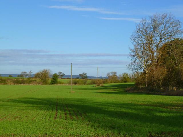Farmland, Barforth