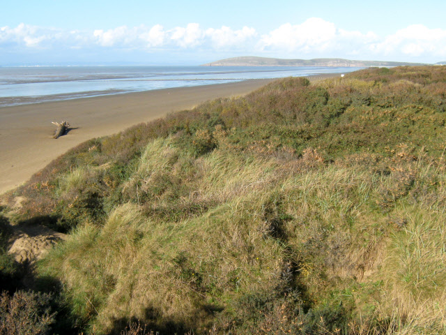 Berrow Sands and dunes
