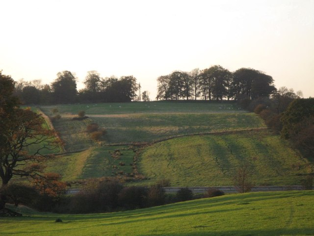 The Vallum between Heddon-on-the-Wall and Rudchester